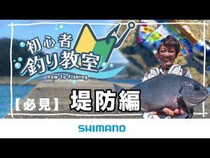 【魚釣りをわかりやすく解説】シマノ初心者釣り教室 ~堤防編~【堤防や防波堤で楽しく魚釣り】