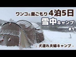 【キャンプ】4泊5日 ワンコと巣ごもり 雪中キャンプ #1 -犬連れ夫婦キャンプ-